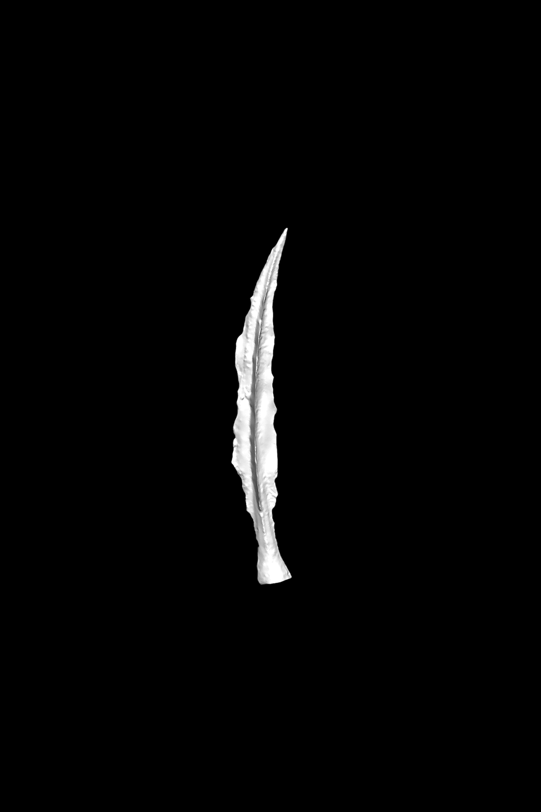 Paul Geelen - Untitled (Love Dart), 2017 - 2018 (Microscan).